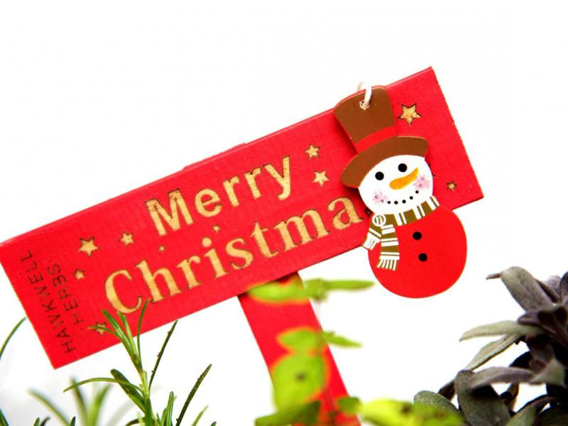 Cookery Themed, and Say It With Herbs, Pots - with a Christmas Twist!